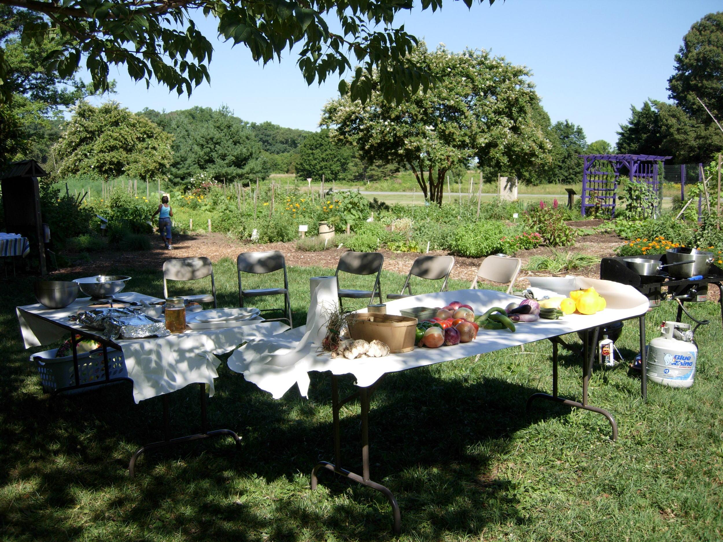 Harvest Day 2006 002.jpg