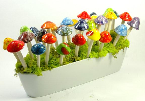 plum scrumptious mushrooms