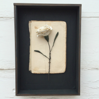 framed carnation