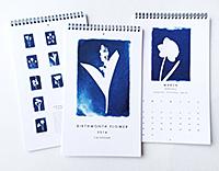 Brenda_Barrett_Calendars