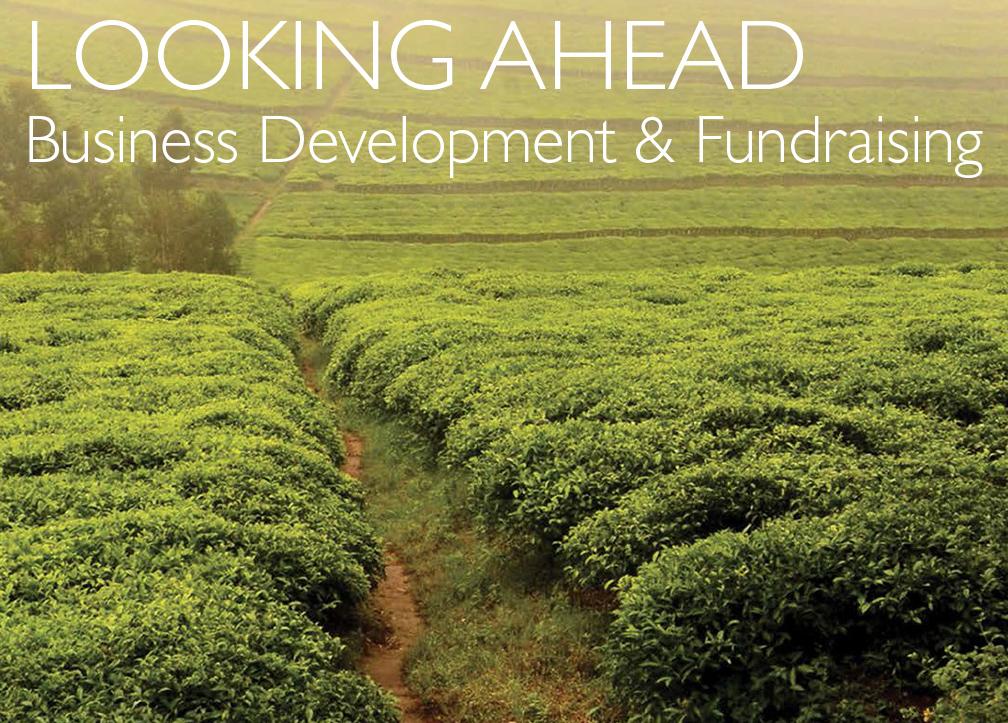 Business Development & Fundraising Design