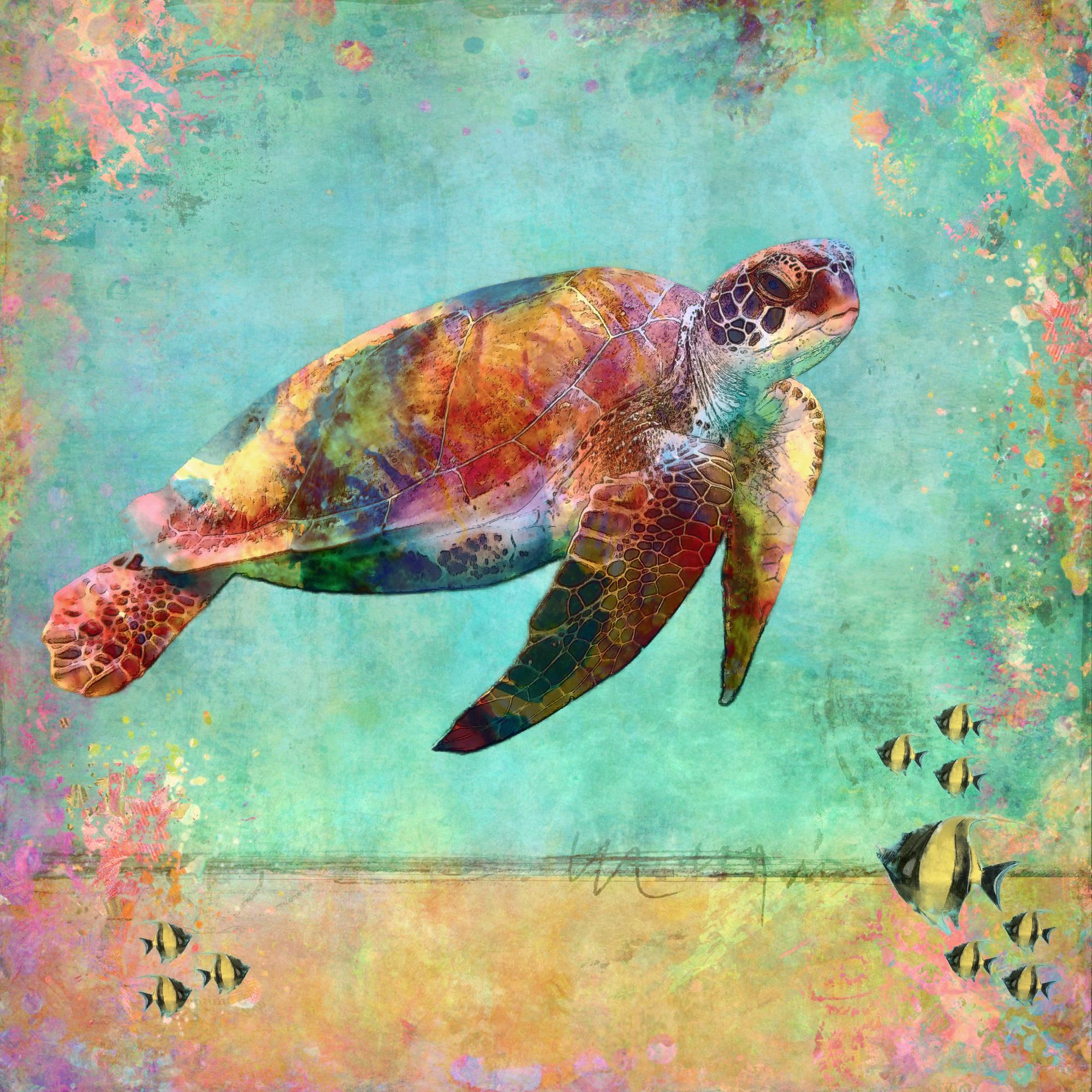 Sea Turtle 1 (small).jpg