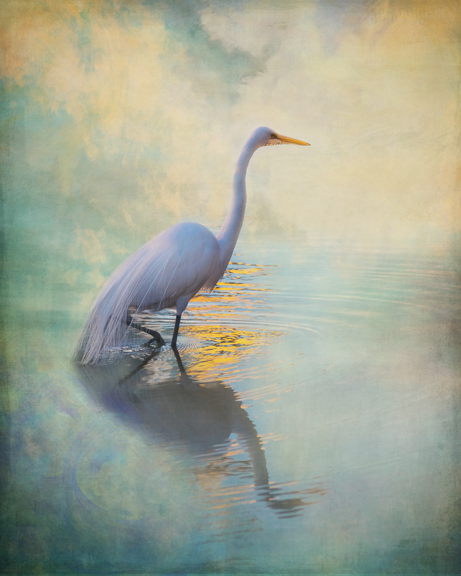 Egret 3-124.jpg