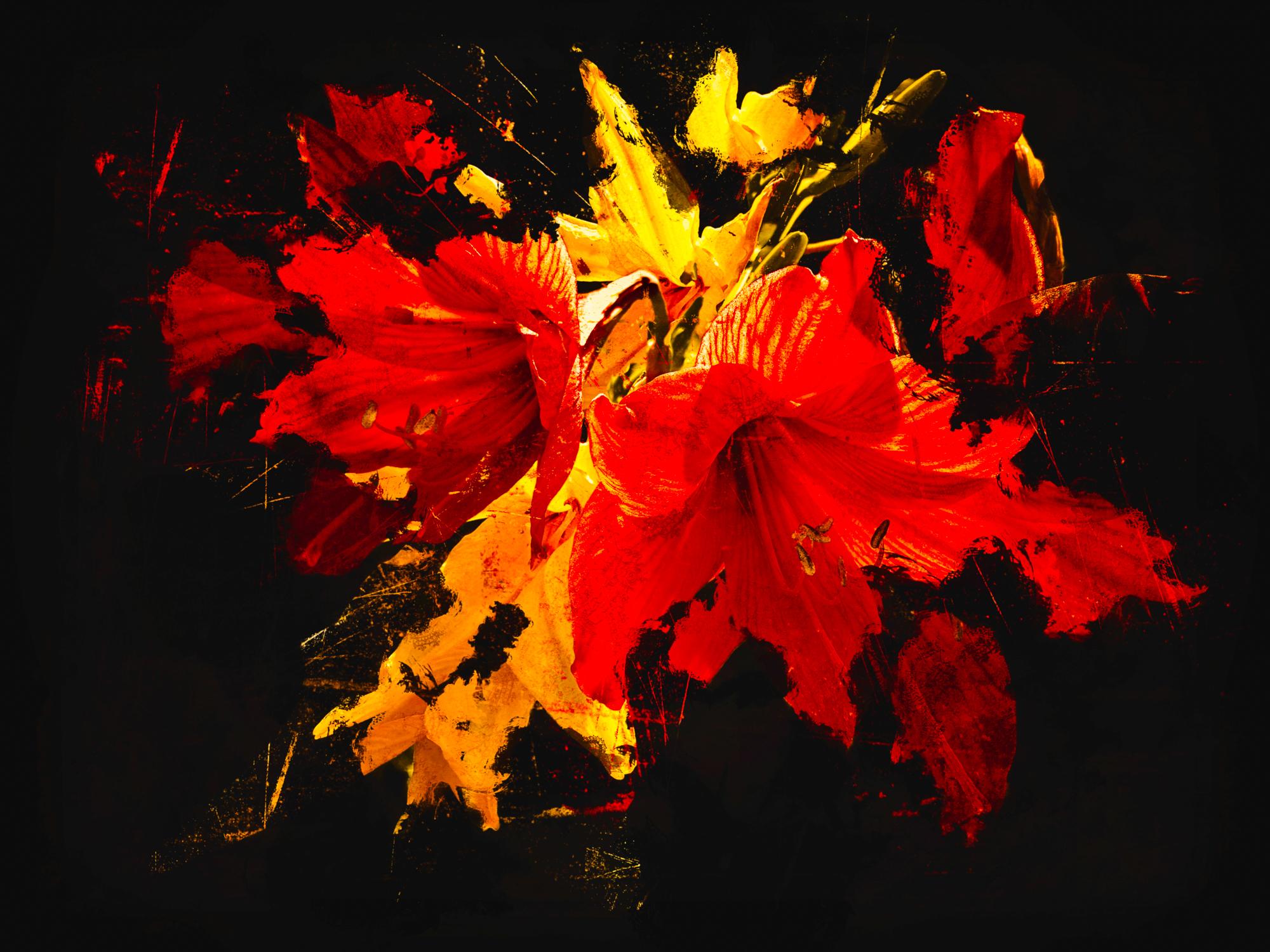 My Flower-128.jpg