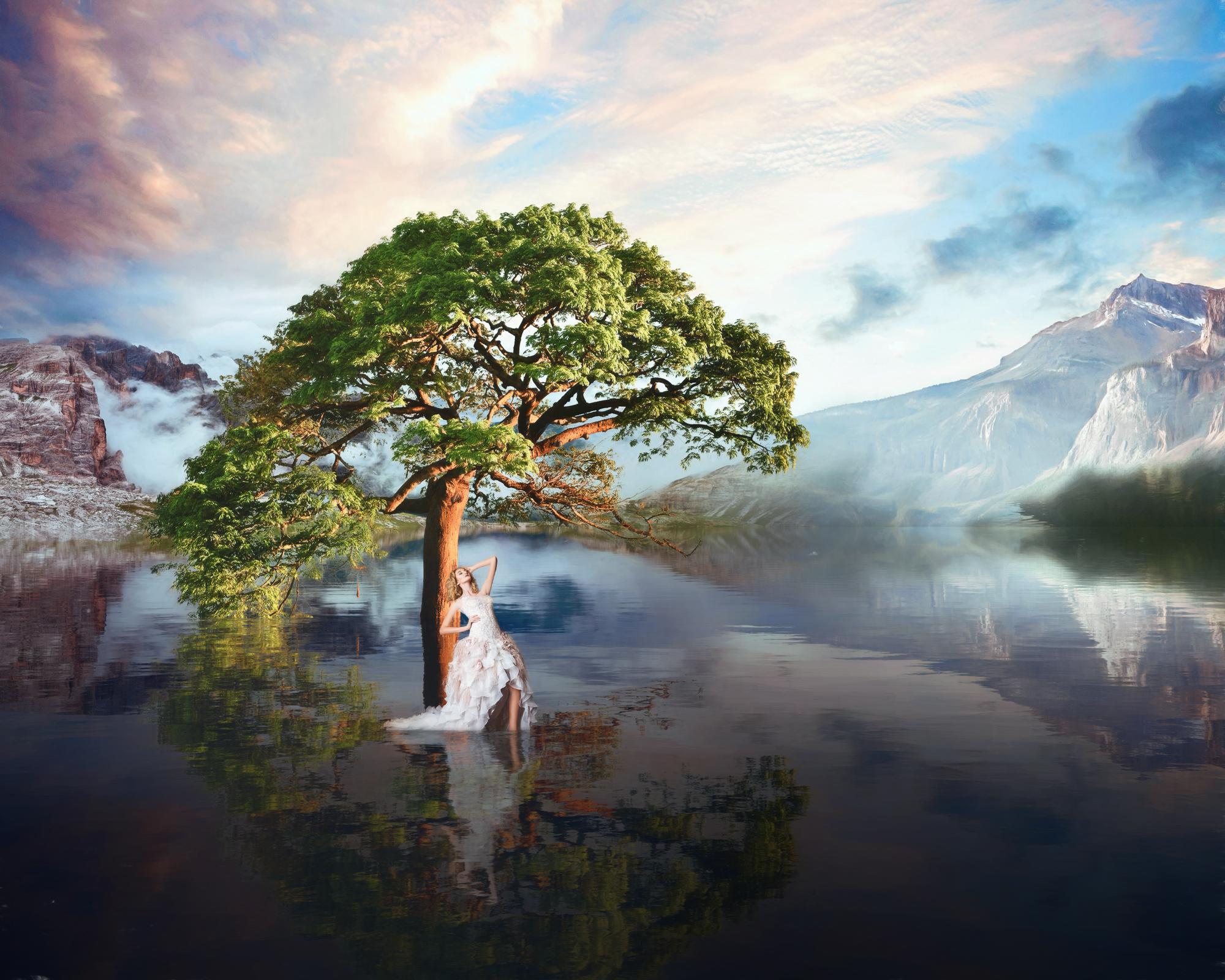 Tree 4-204.jpg