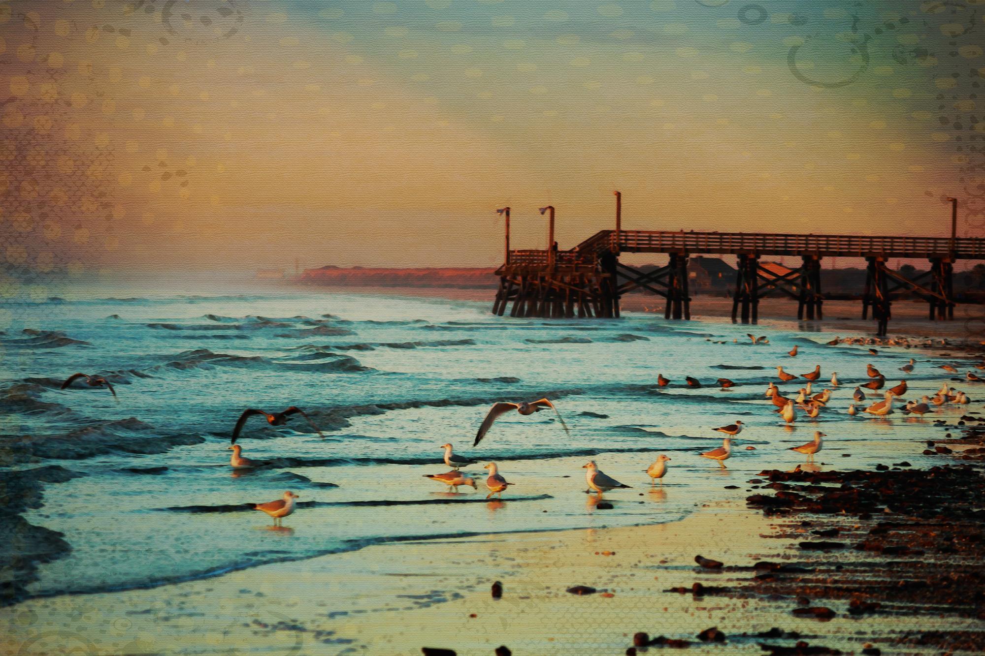 Beach-1-224.jpg