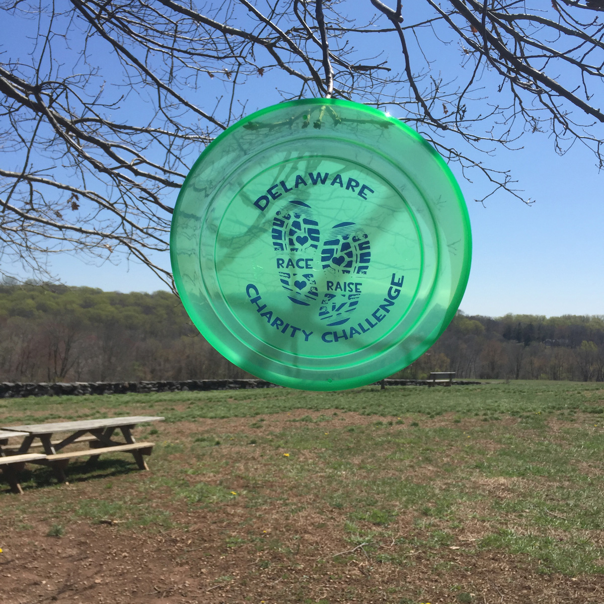 Check out our cool Delaware Charity Challenge frisbee our competitors will receive in their swag bag on April 30.