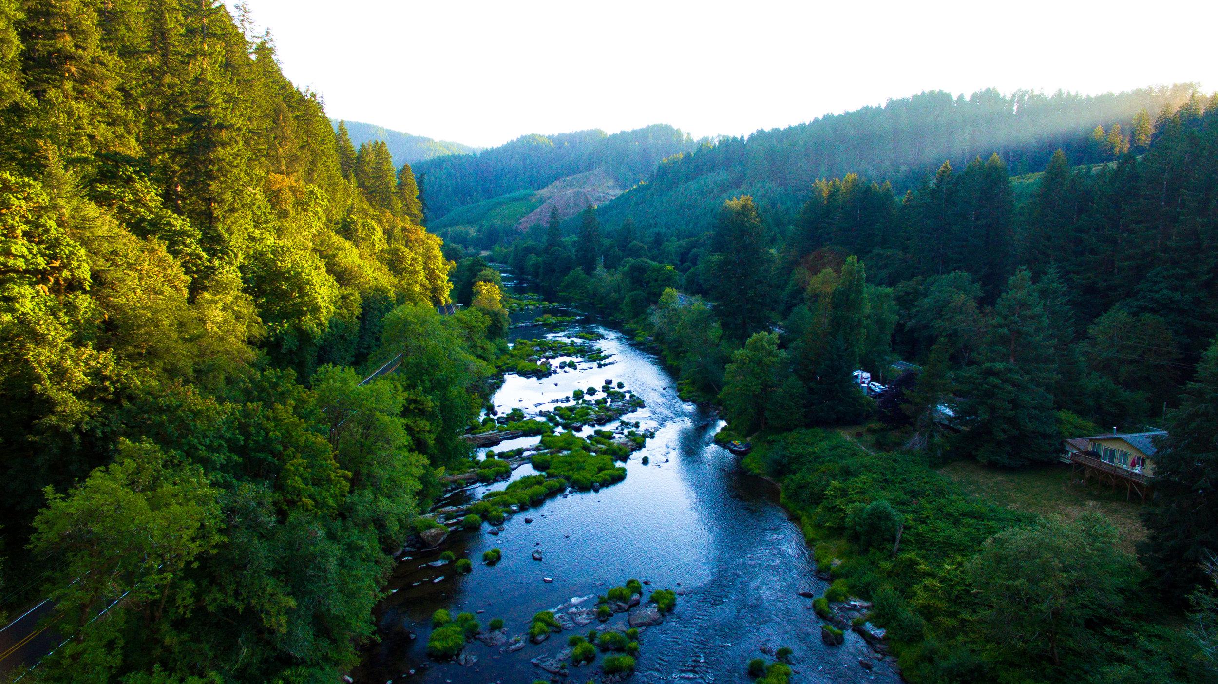 The River Palette.jpg