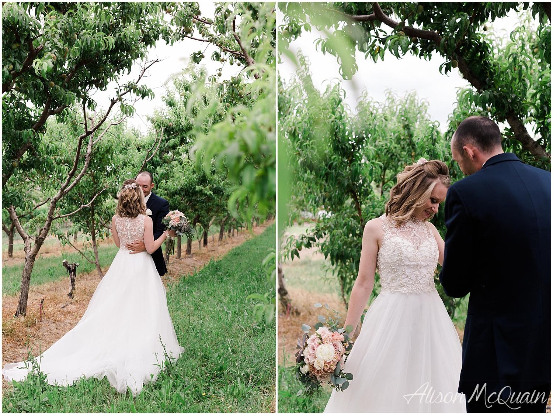 NandZ_Wedding_WeddingHouseatPalisade_CO_6_2018_amp_0013.jpg