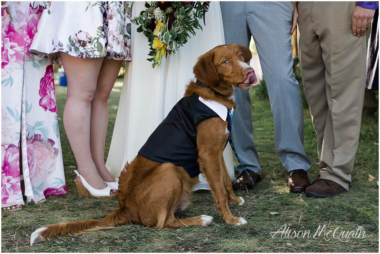 AandJSteb_Longmont_Colorado_Wedding_AMPhoto_Aug2018_0011.jpg