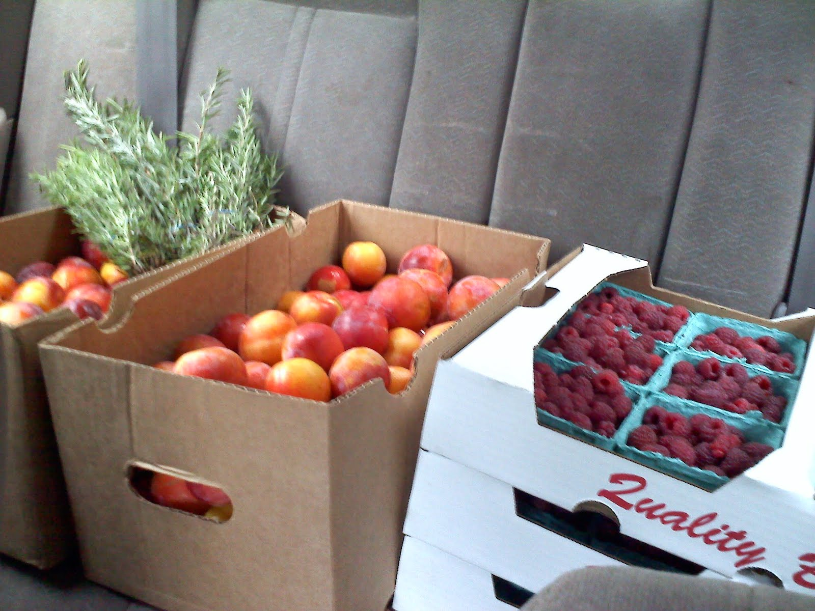 The back of the car after my early morning farm market run.