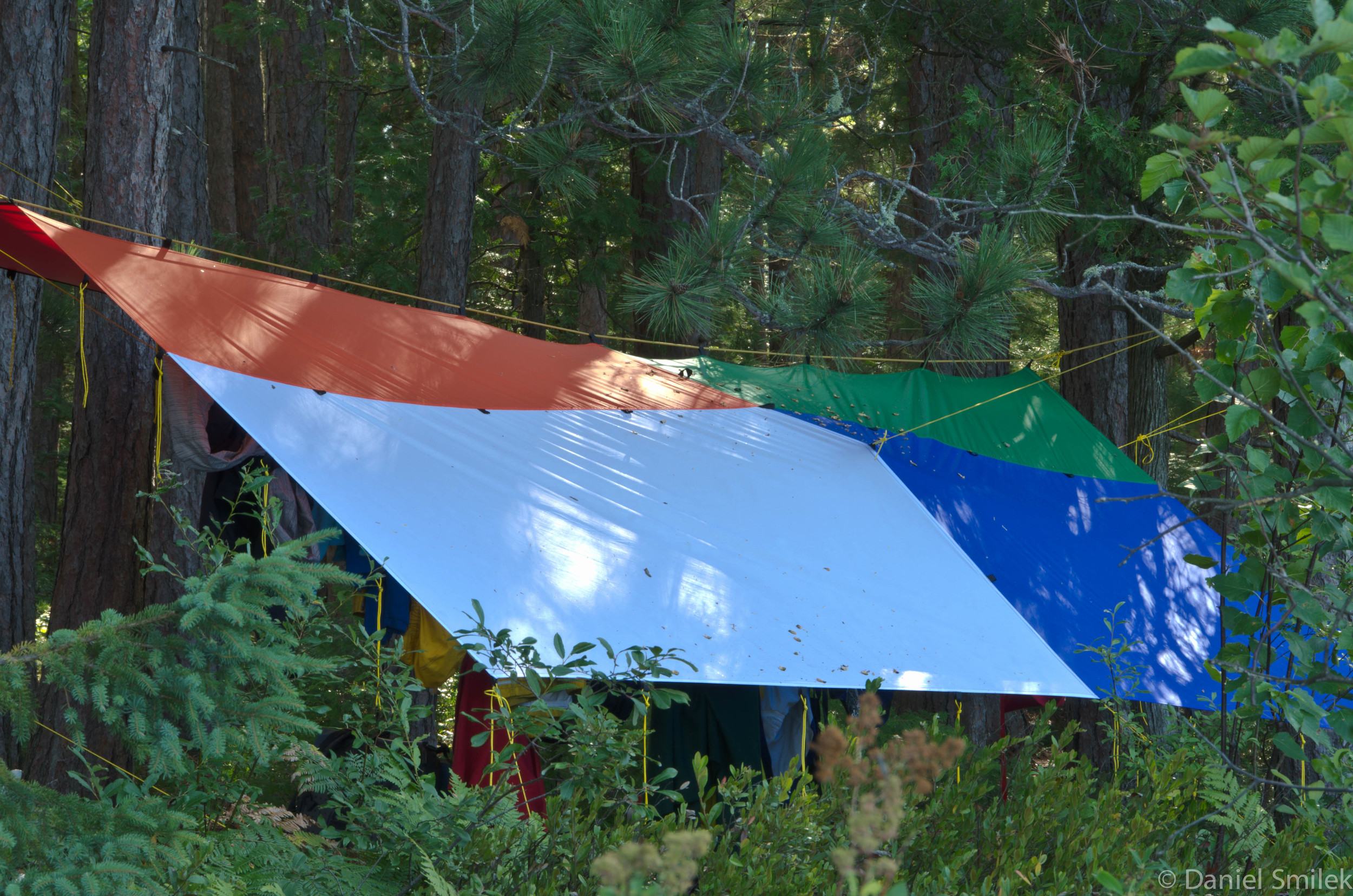 One of our tarps from Cook Custom Sewing. We store our gear under this one.