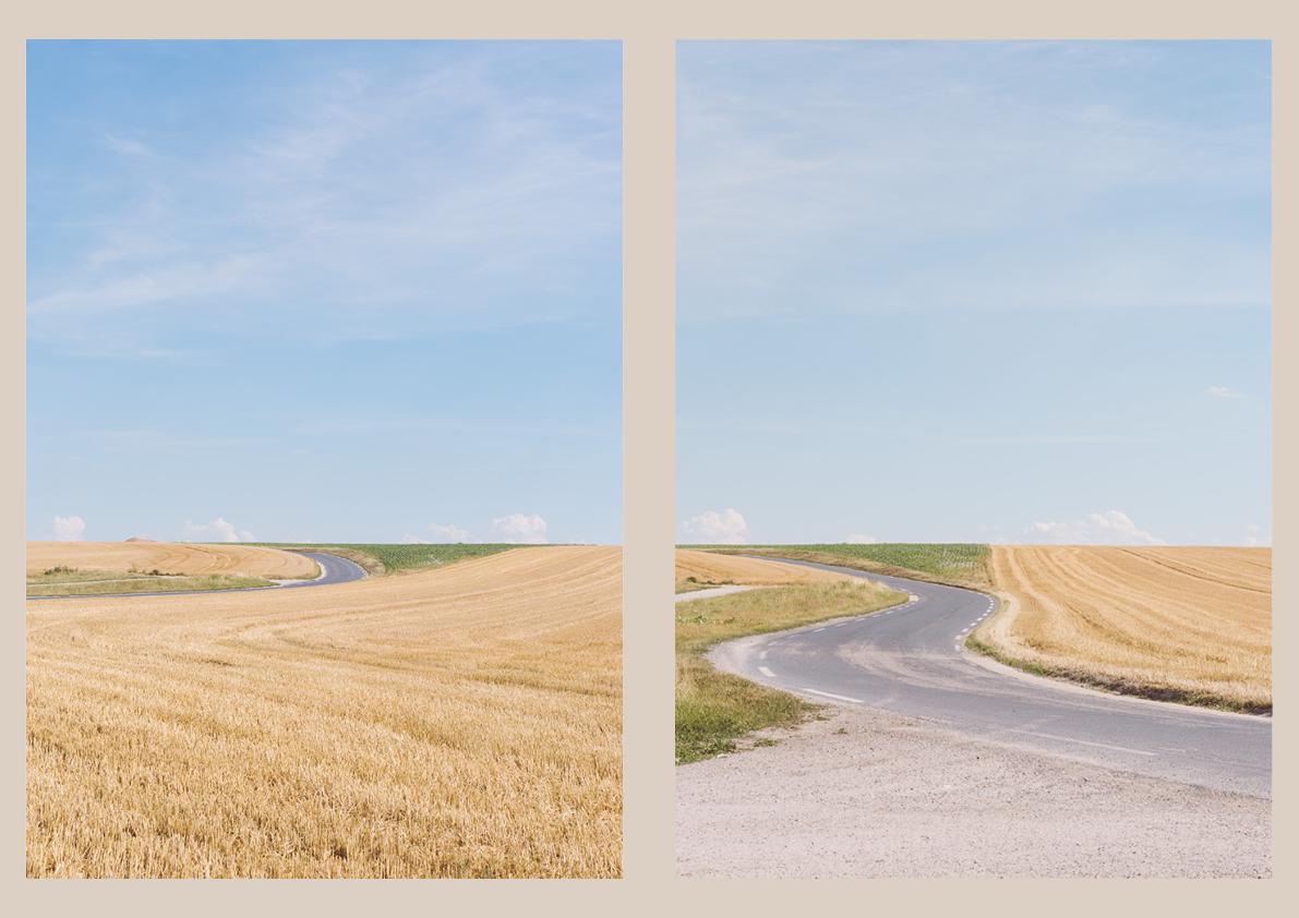 Fields3.jpg