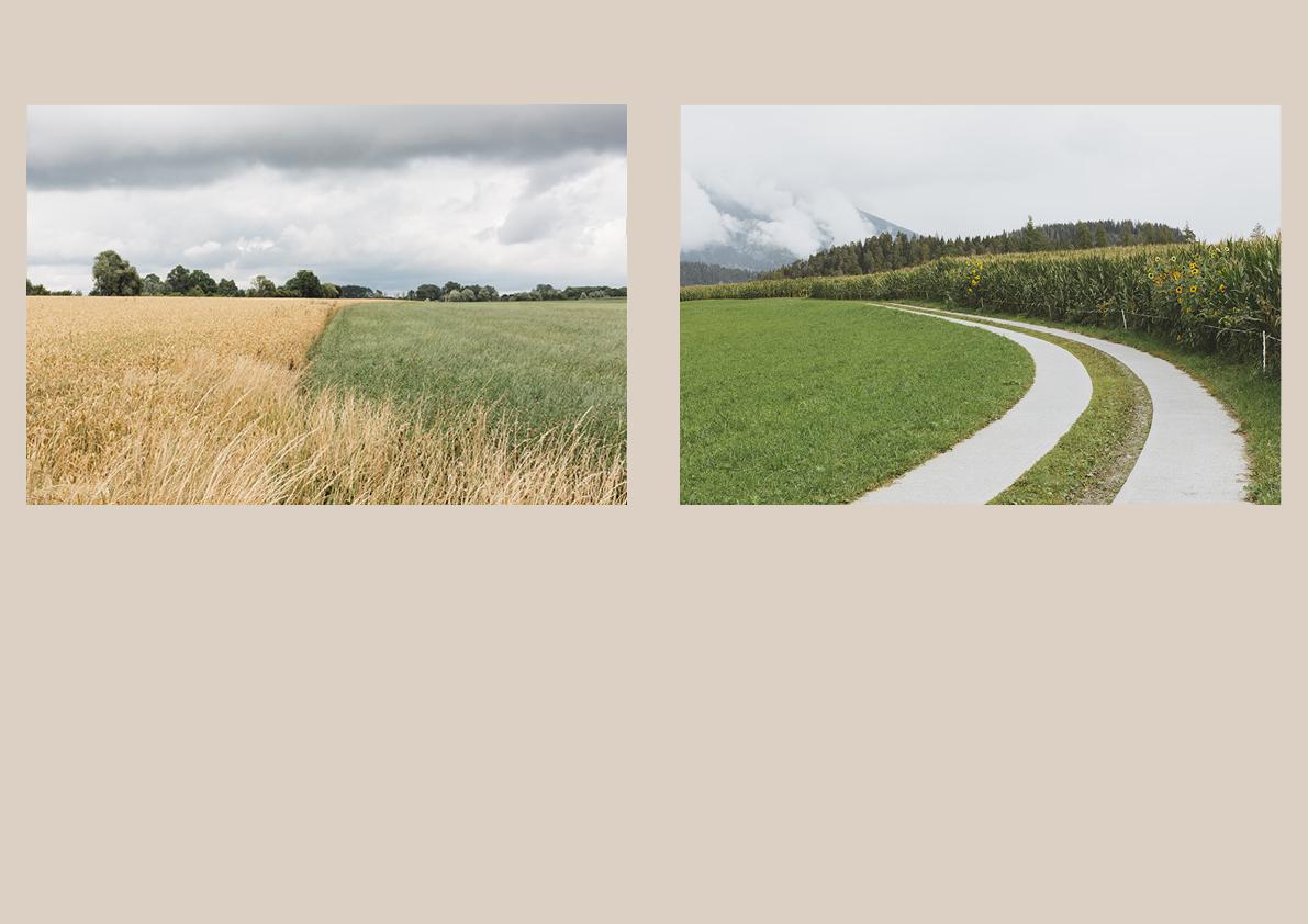 Fields9.jpg