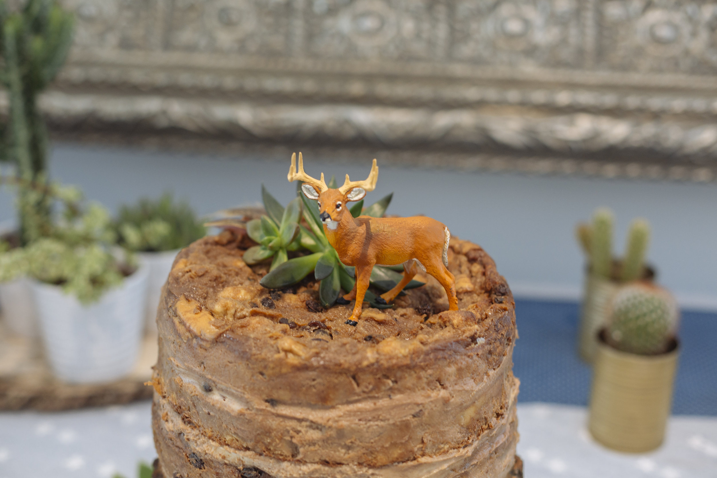 close-up of cake toppers. deer figurine + real succulents + real feathers