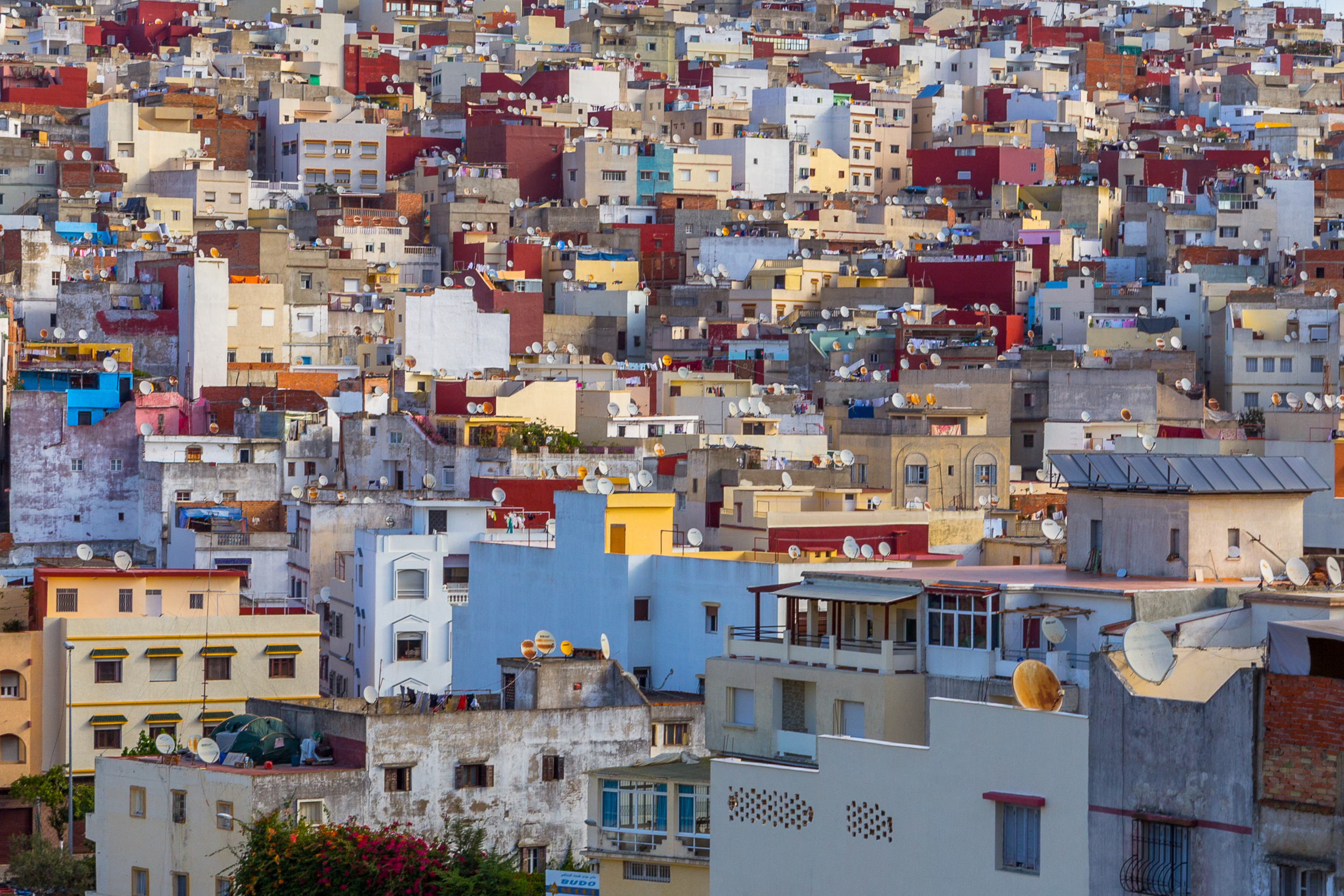 Tangier - therearmirror.com-48.jpg
