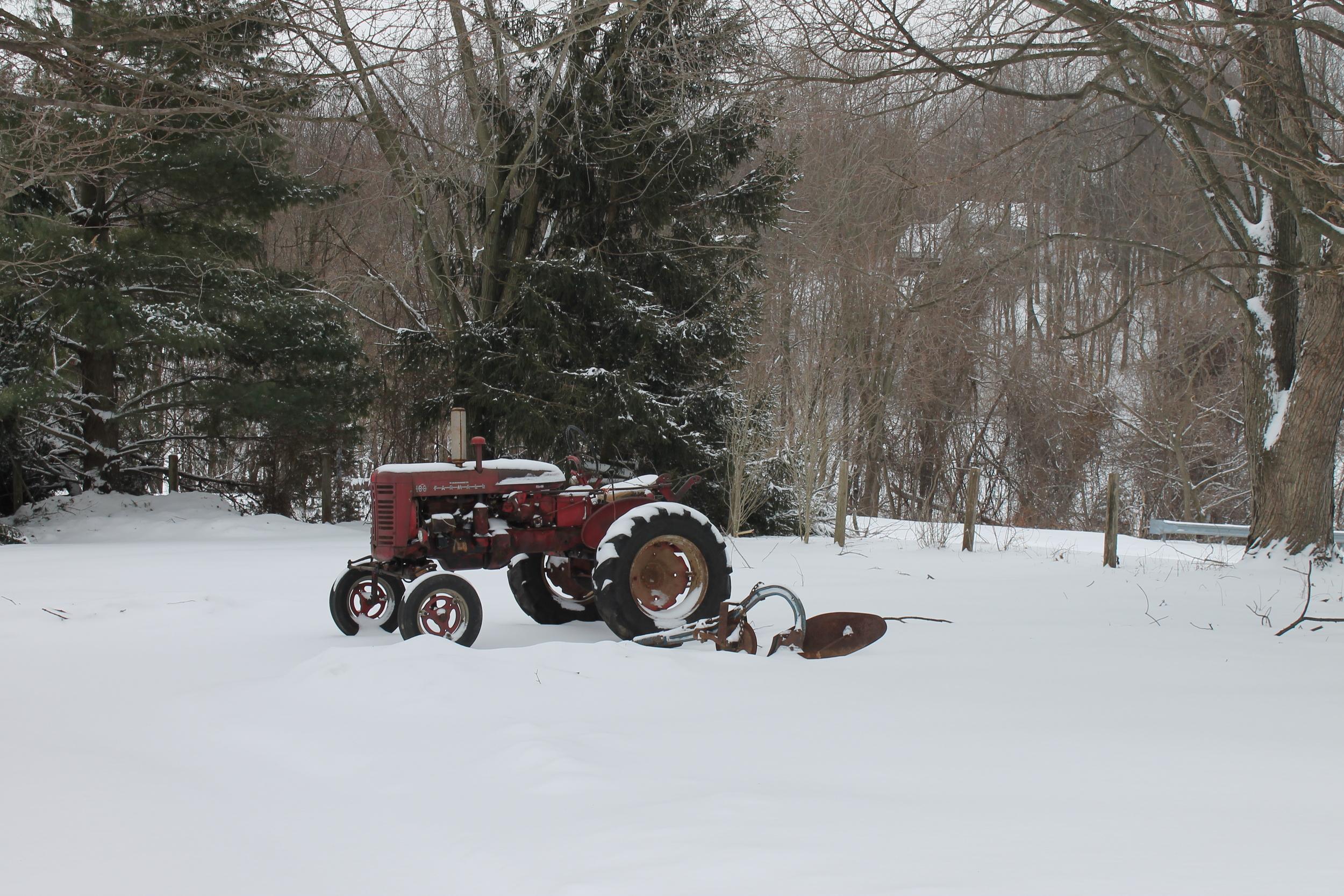 Farm 001.JPG