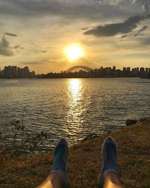 Last sun ☀️#sydney #sydneyharbour #pachamama #instalife #instagood #picoftheday  #wildlife #instalife #goexplore #nature #naturelovers #outdoors #positivevibes #inspire #instanature #instanaturelover #natgeo #like4like #lifeofadventure #discovering #discoverearth #roamtheplanet #exploremore #wildernessculture #feedbacknation #ourplanetdaily #welivetoexplore #artofvisuals #agameoftones