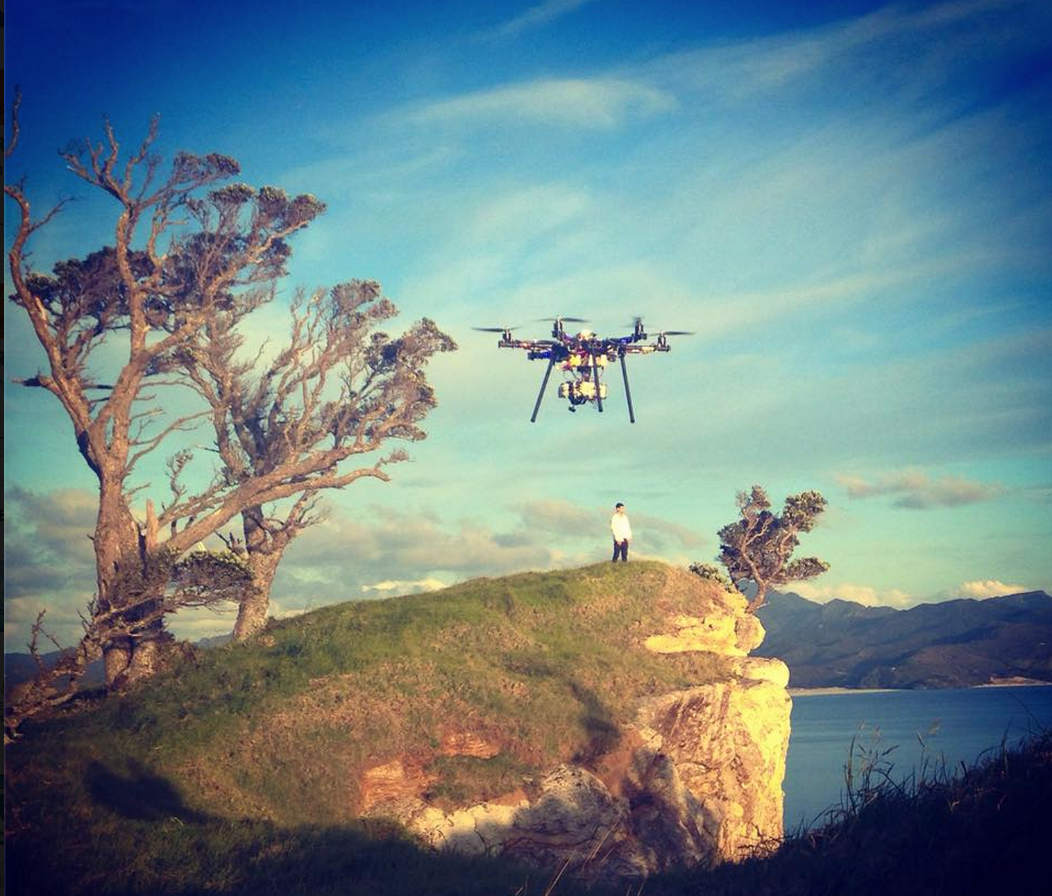 RISKY, on the cliff-tops, Great Barrier Island. An Aerial Vision drone approaches.