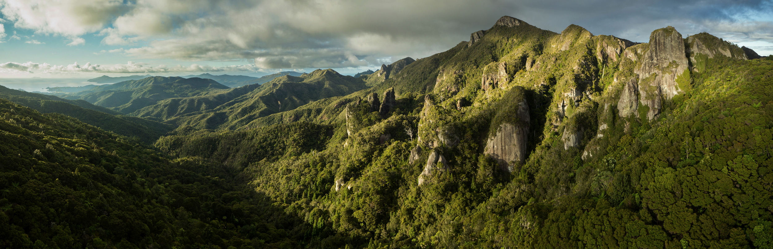 Above - Windy Canyon, Great Barrier Island. Photo: (captured with an  Aerial Vision  drone) Glenn McLelland,  Aerial Vision .