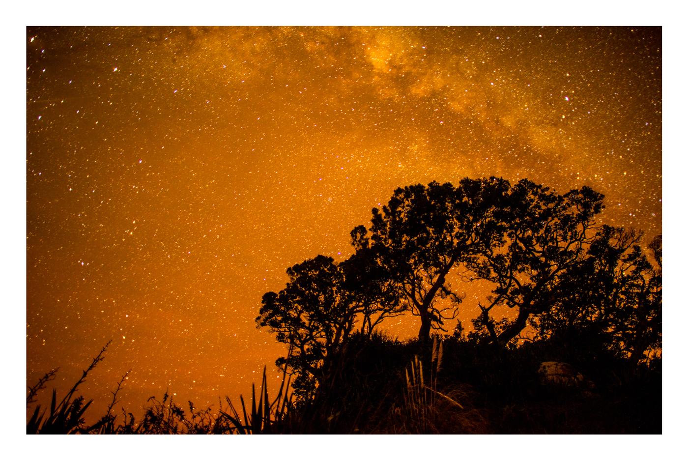 StarsWebRes-6.jpg