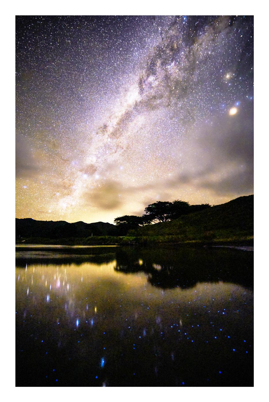 StarsWebRes-10.jpg