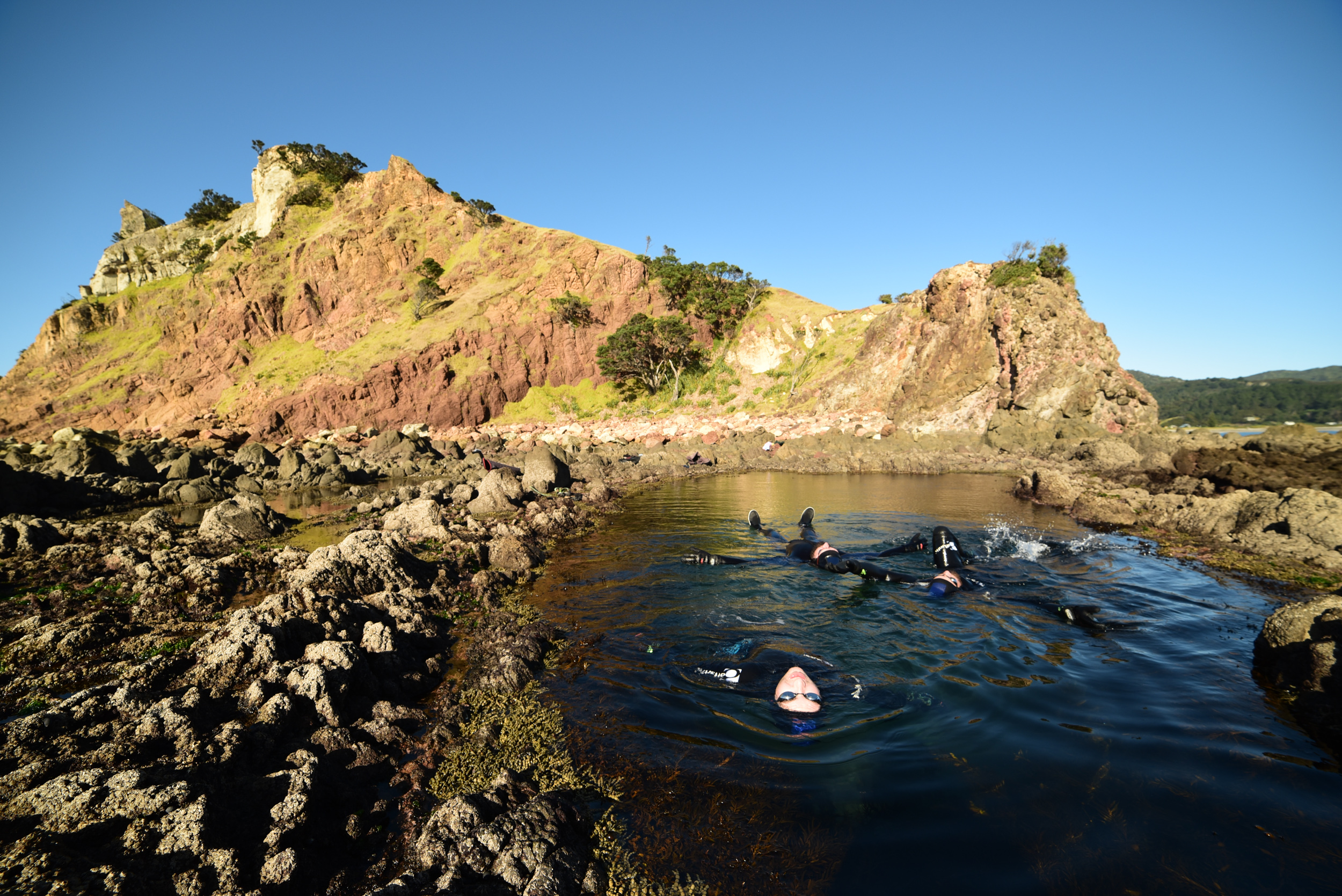 The Nudge exhibiting some Dark Arts in the Mermaid Rock Pool, Great Barrier Island