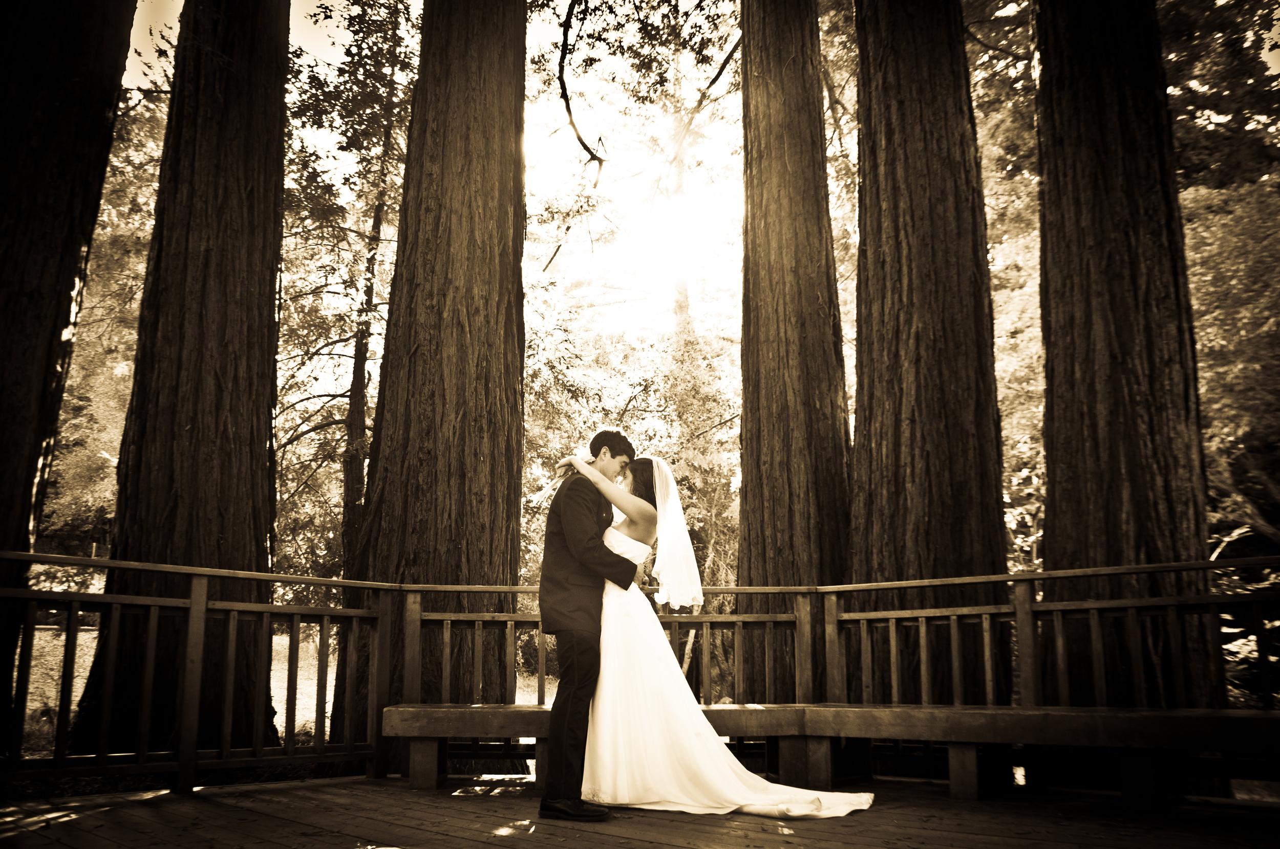 Wedding Showoff-14.jpg