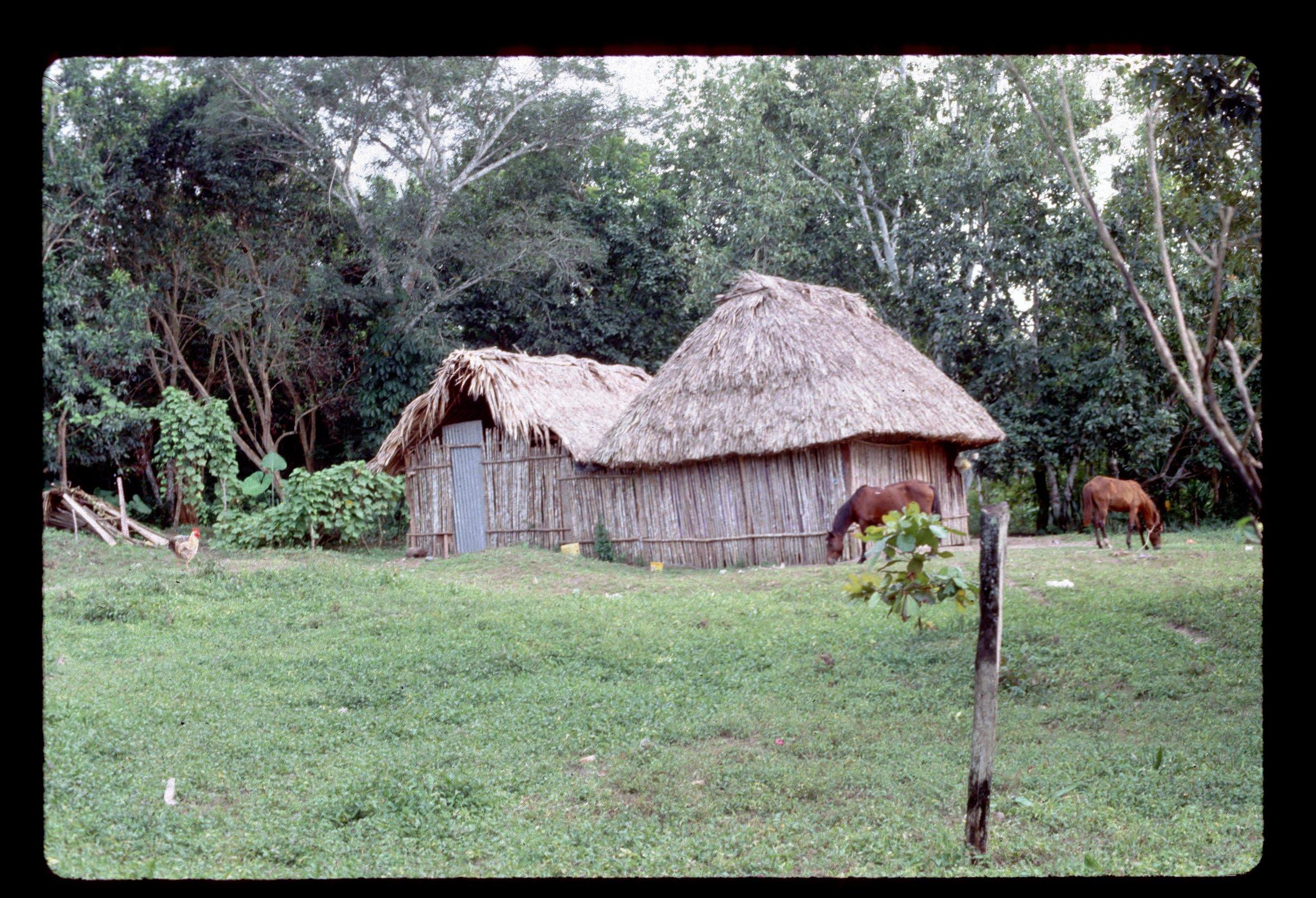 Coatepeque61.jpg