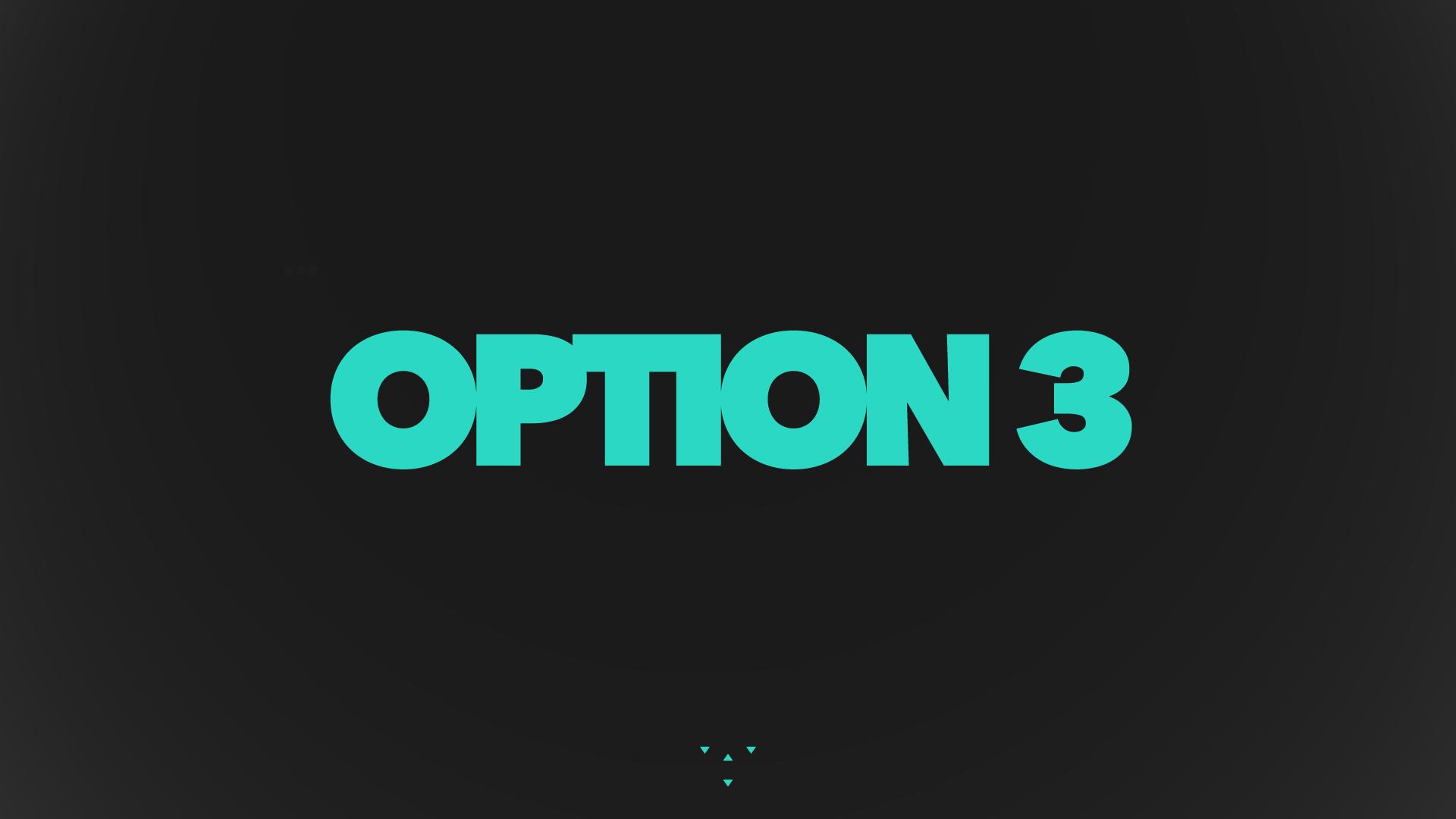 03_option3.png