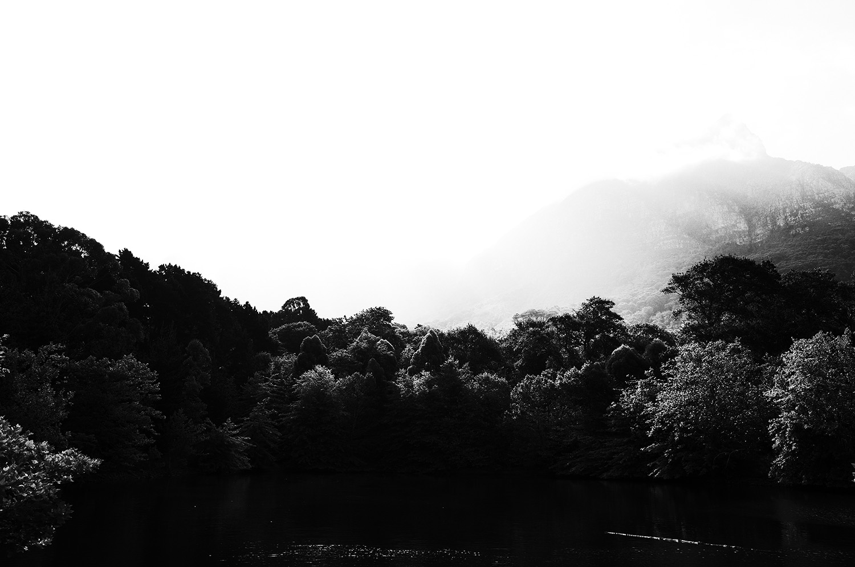 DALeast-photography2.jpg