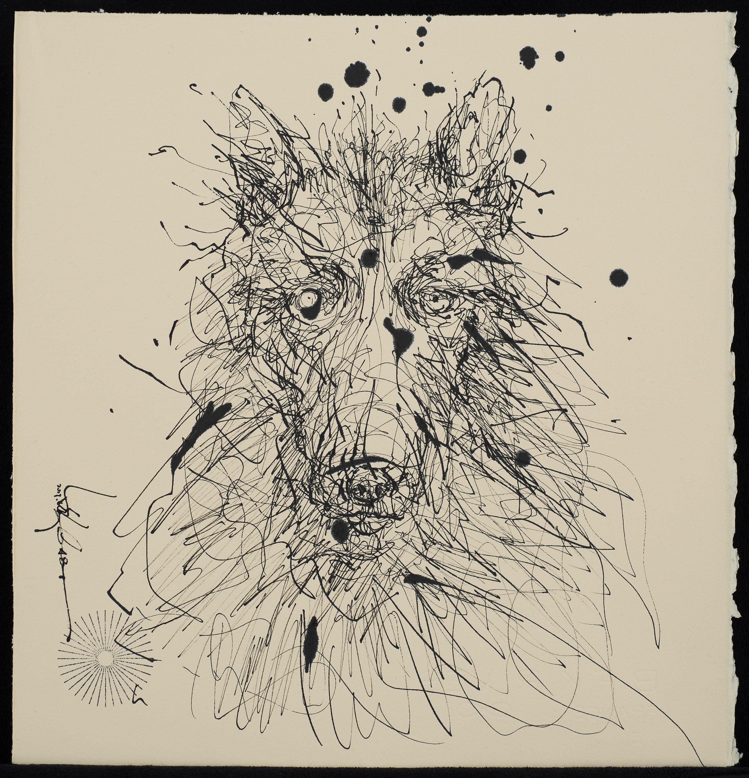Wolf-2500px.jpg