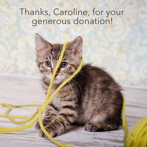Caroline Thank you.jpg