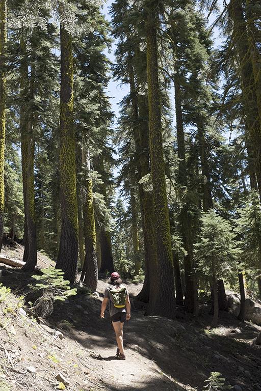Tahoe15_small.jpg