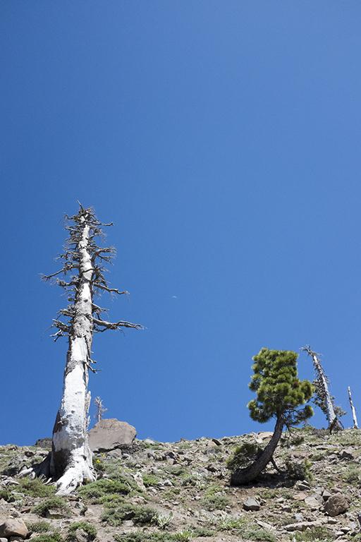 Tahoe17_small.jpg
