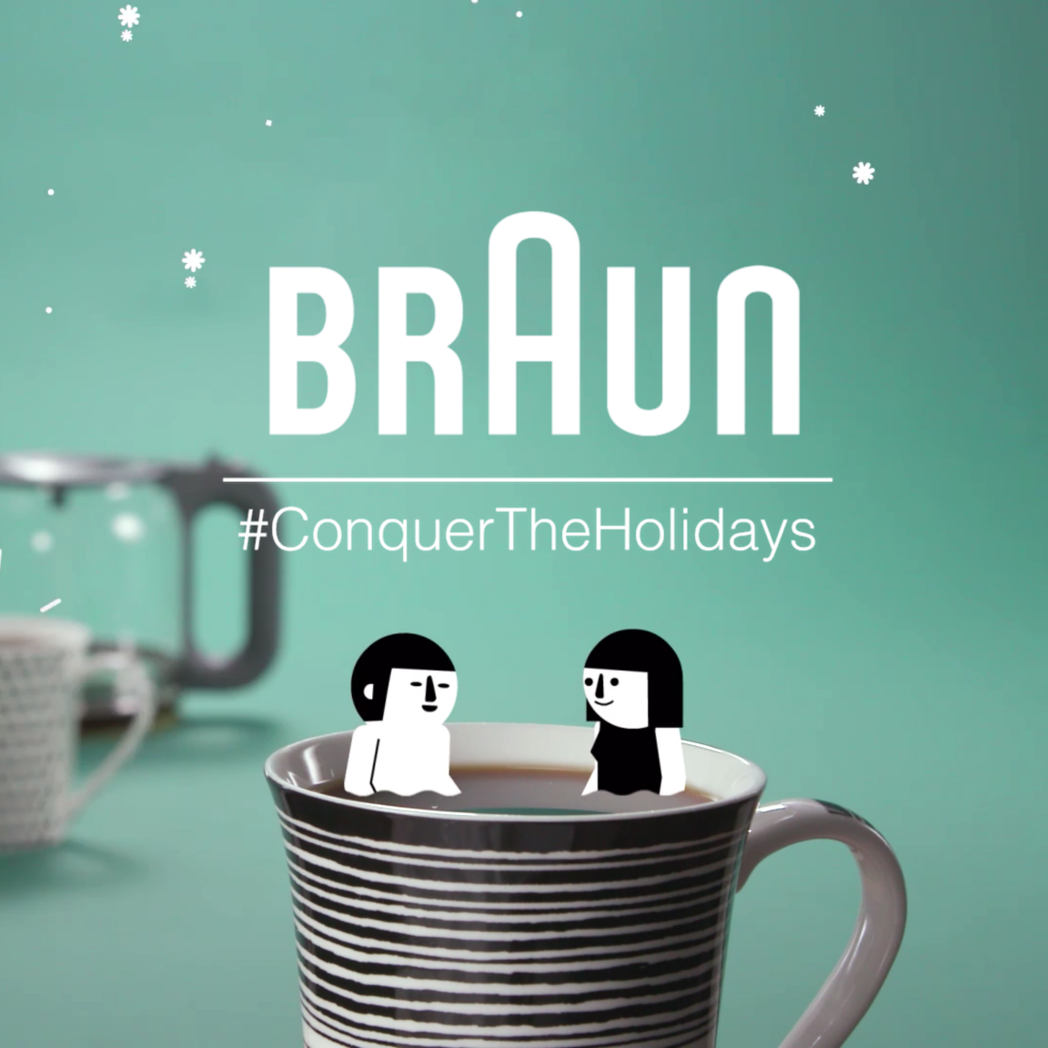 BRAUN HOLIDAY SPOTS
