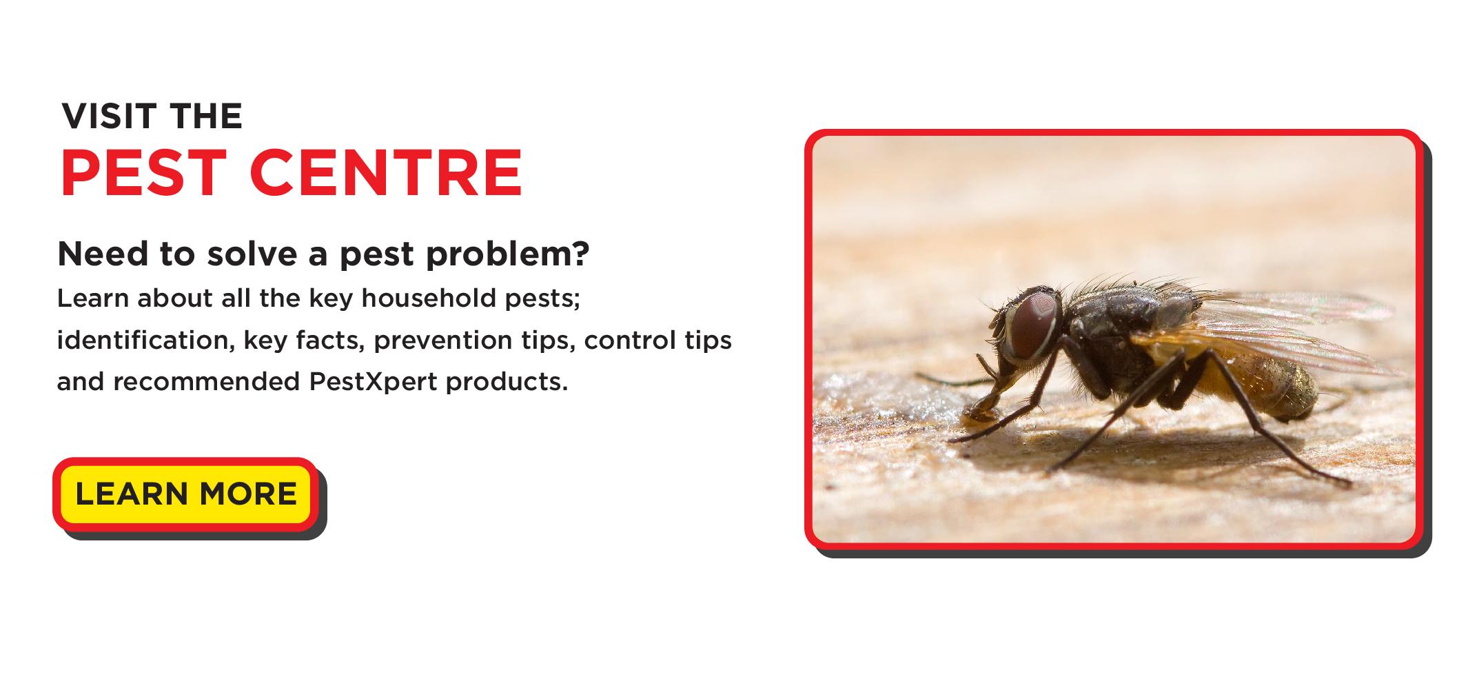 PestXpert Pest Centre