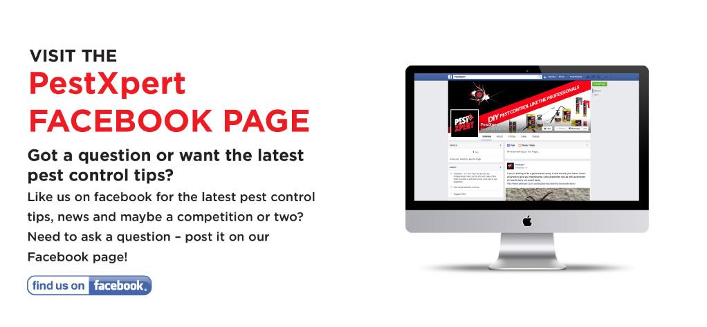 PestXpert Facebook Page
