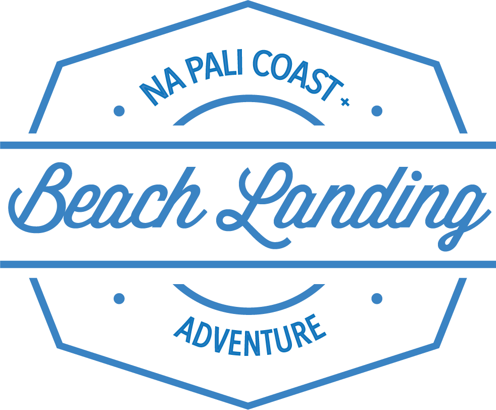 BeachLanding-blue.png