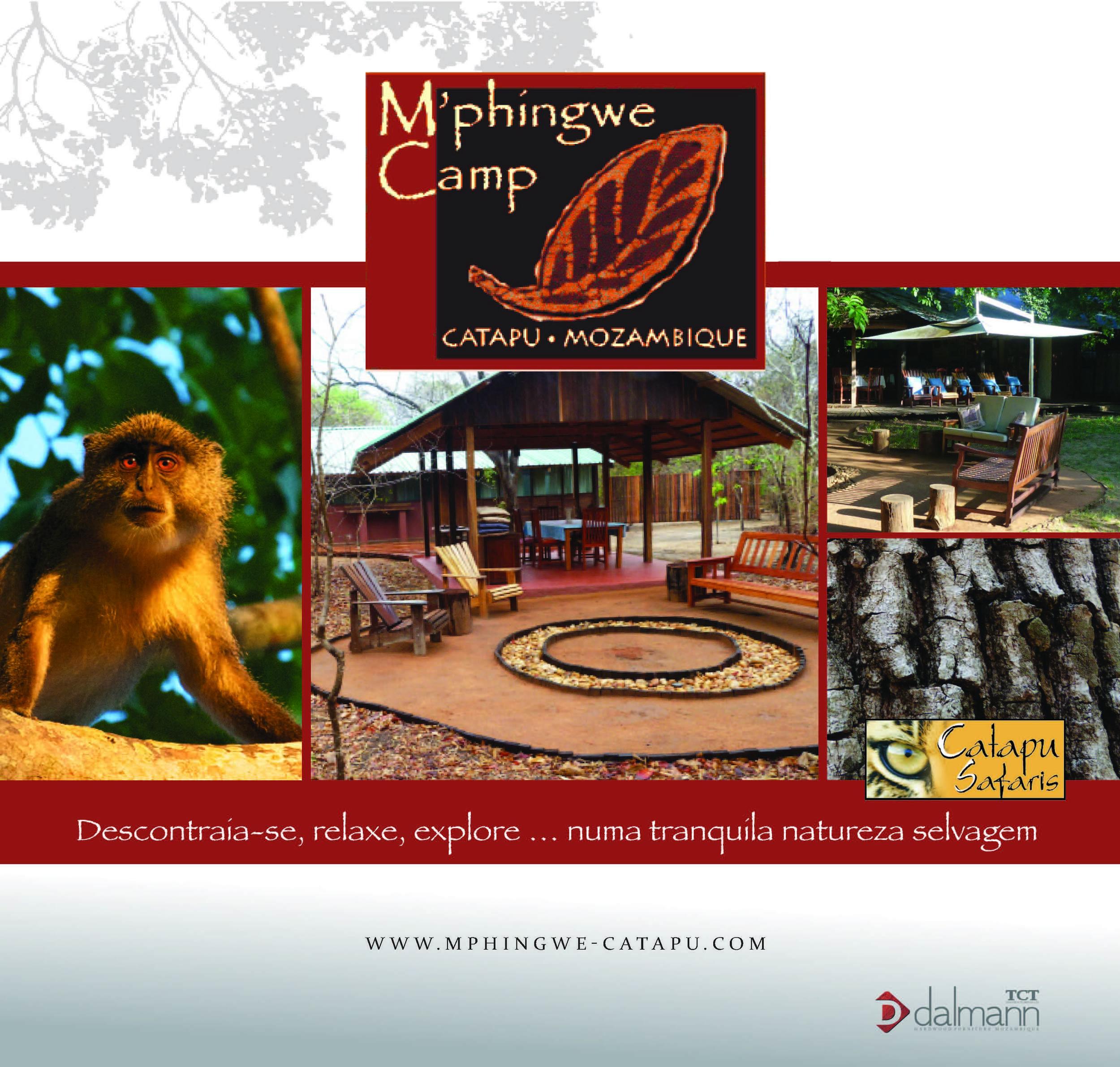 TCT Dalmann Brochura - Mphingwe - Português