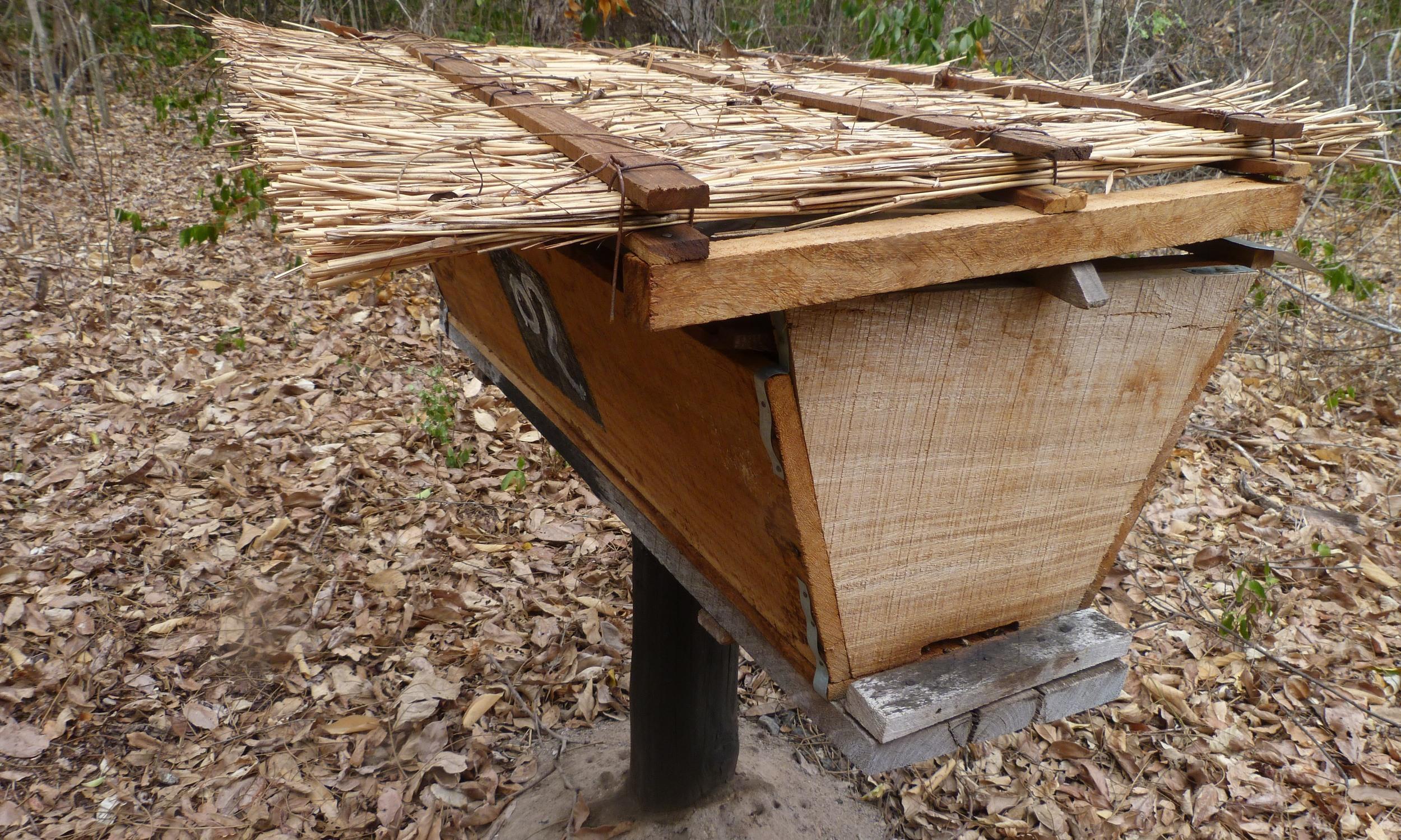 Colmeias  -Kenyan top bar hives