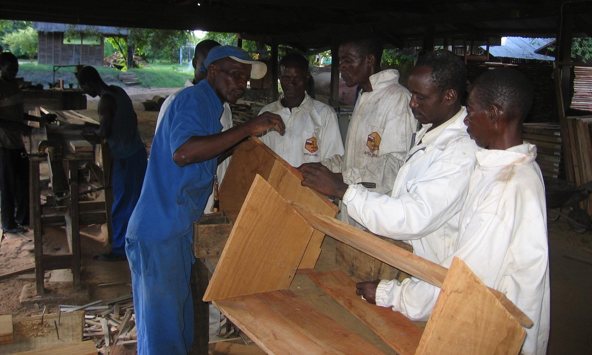 Treino na manufacturação de colmeias  - Training in hive manufacture