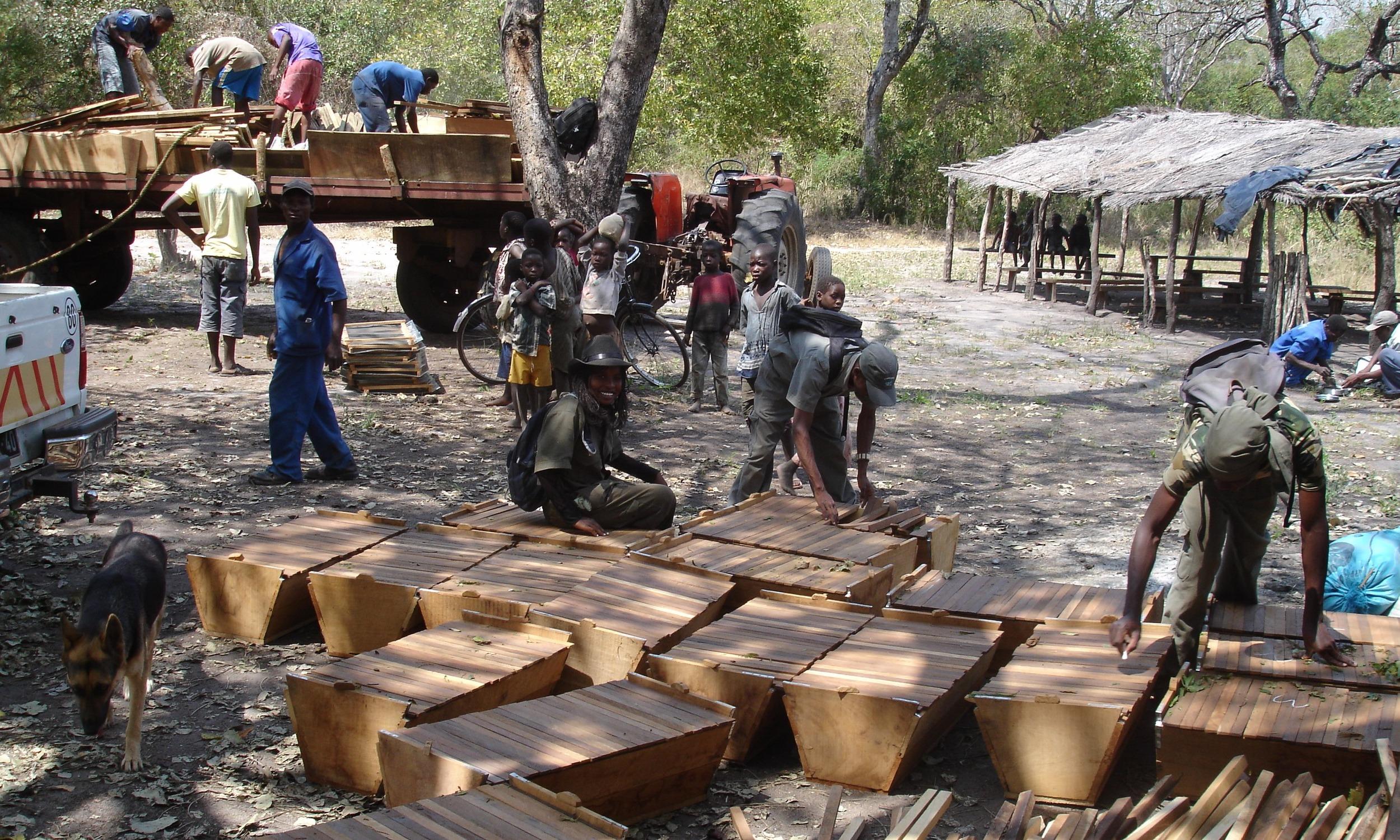Entrega de colmeias para a comunidade  - Delivering hives to the community
