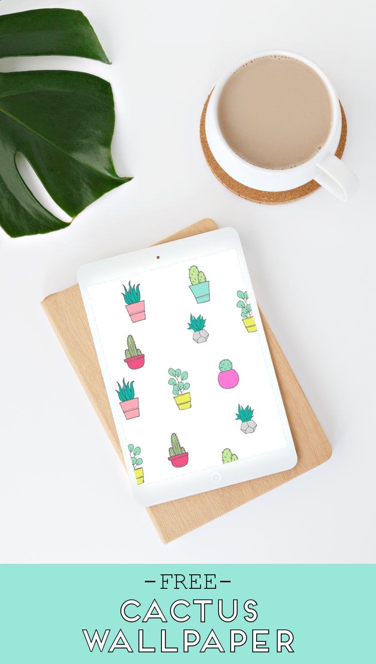 FREE CACTUS AND SUCCULENT WALLPAPERS FOR YOUR DESKTOP, TABLET AND PHONE.