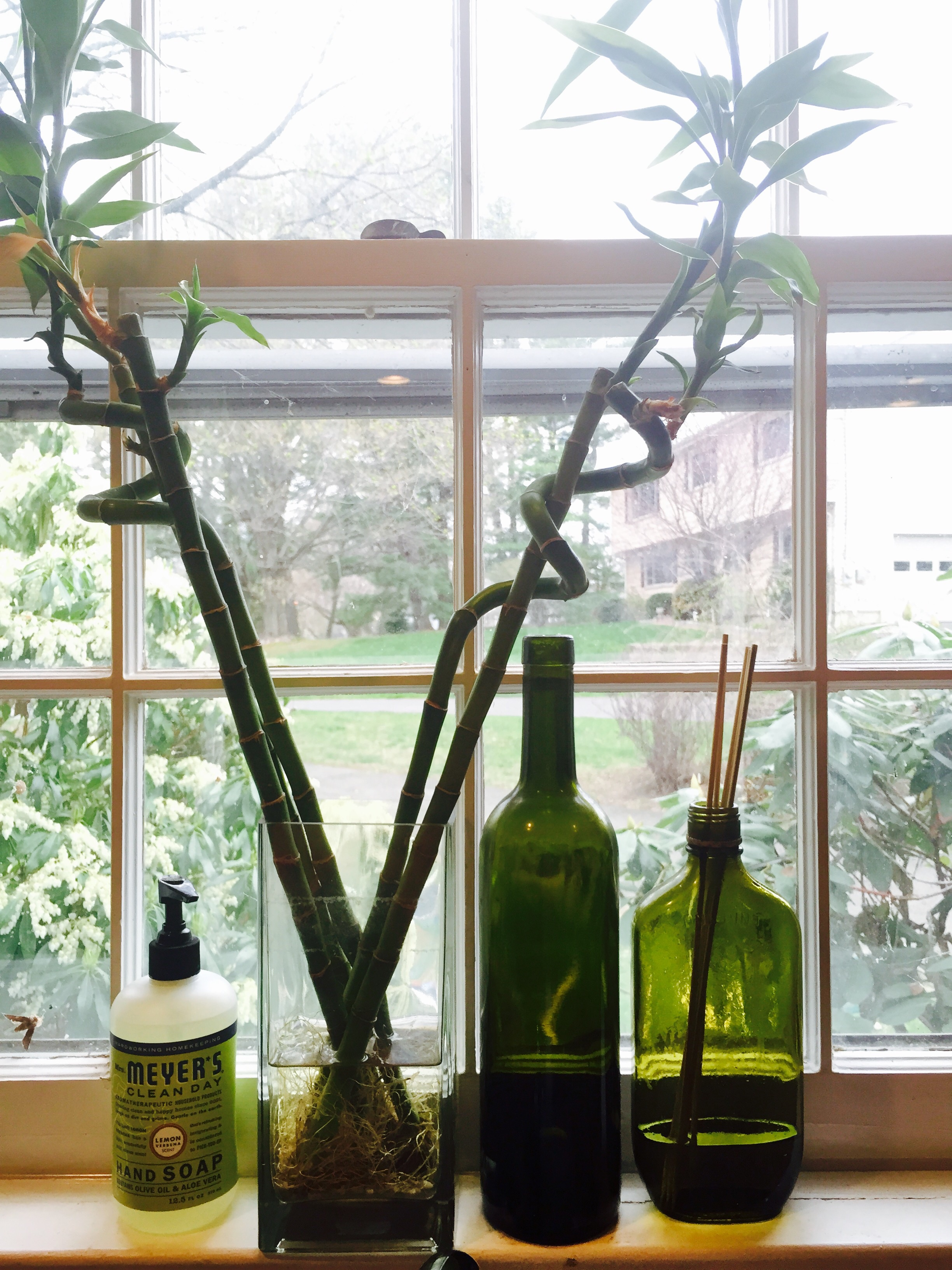 How to make your own reed diffusers. A vintage liquor bottle sits on my kitchen windowsill and emits the most wonderful of aromas. Image property of The Entertaining House.