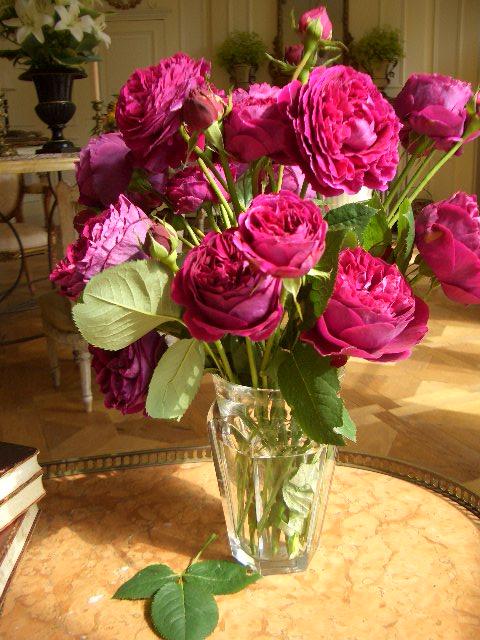 Rosesfrom Bettie Bearden Pardee's gardens