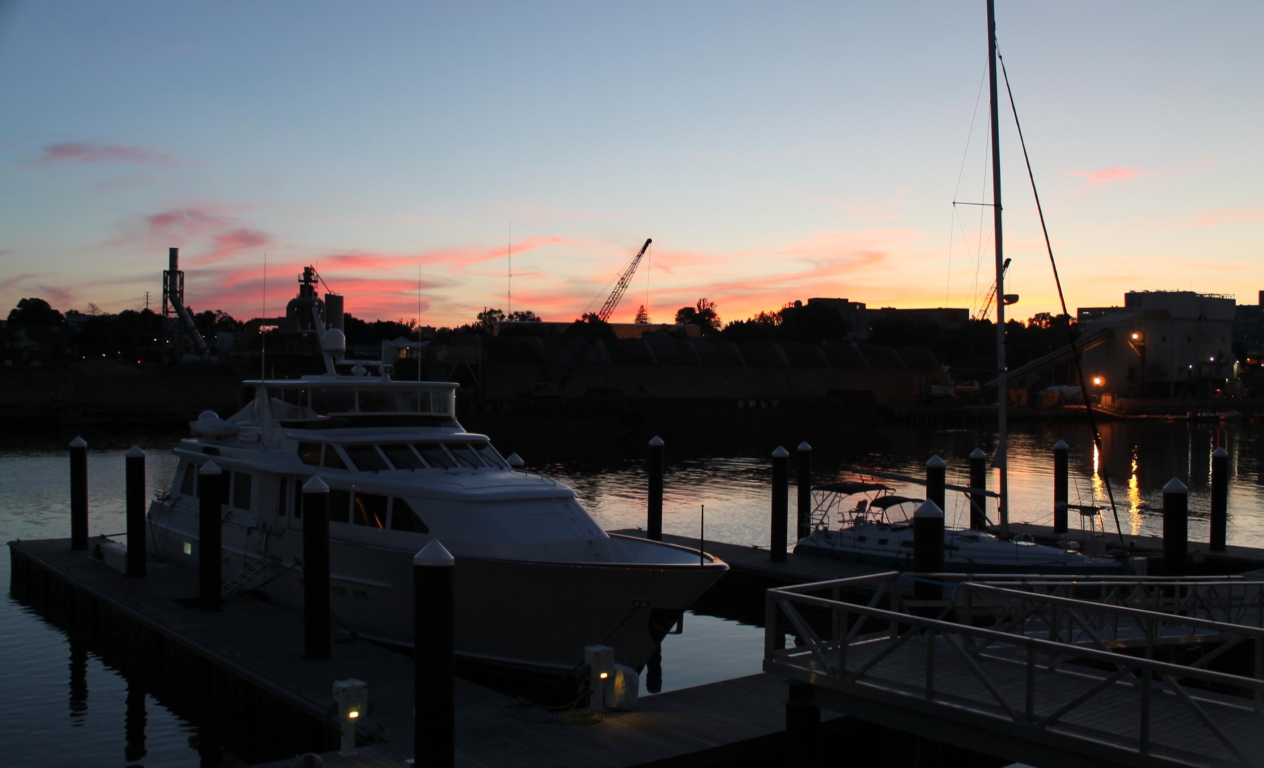 Paloma, Stamford CT. Image via Jessica Moseley Gordon