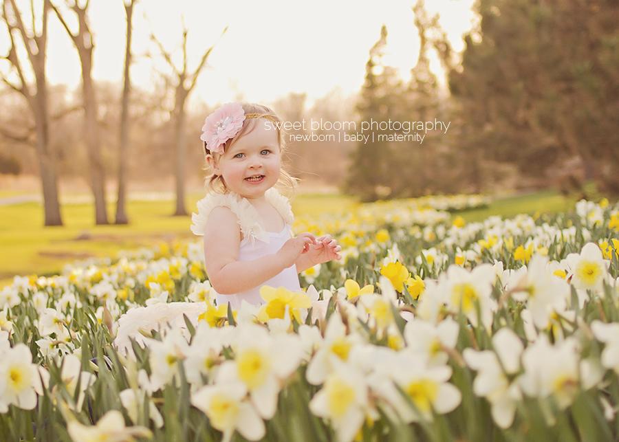dayton ohio baby photographer bridget 2nd birthday 1.jpg