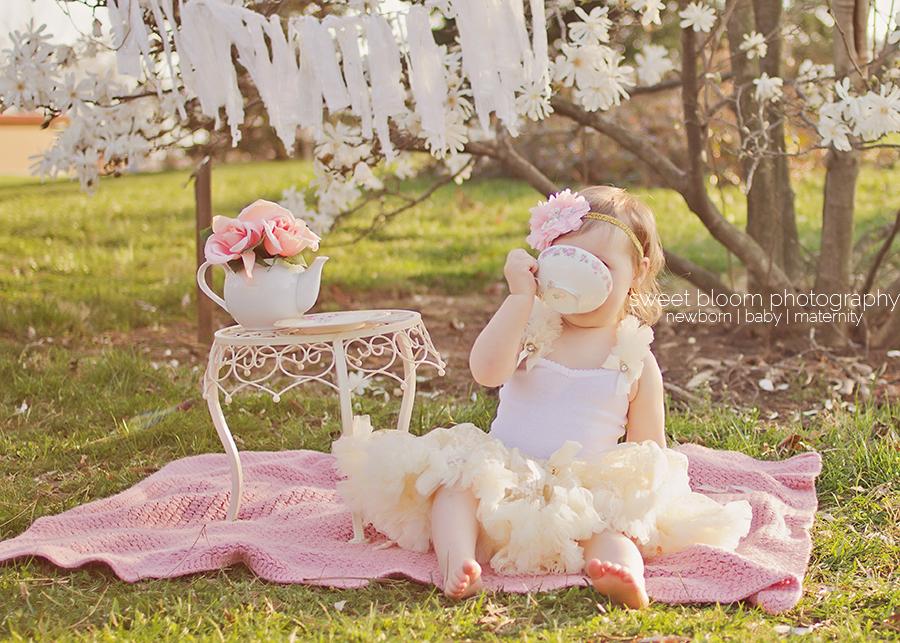 dayton ohio baby photographer bridget 2nd birthday tea party 3.jpg