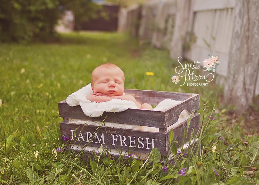 dayton ohio newborn photographer carter 8.jpg